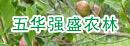 五华强盛农林