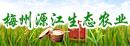 梅州源江生态农业